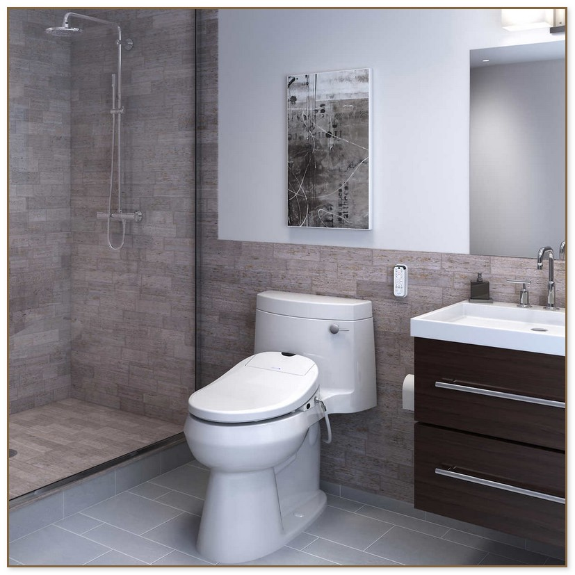 Unique Bidet Toilet Seat Costco Costco Bidet Toilet Seat