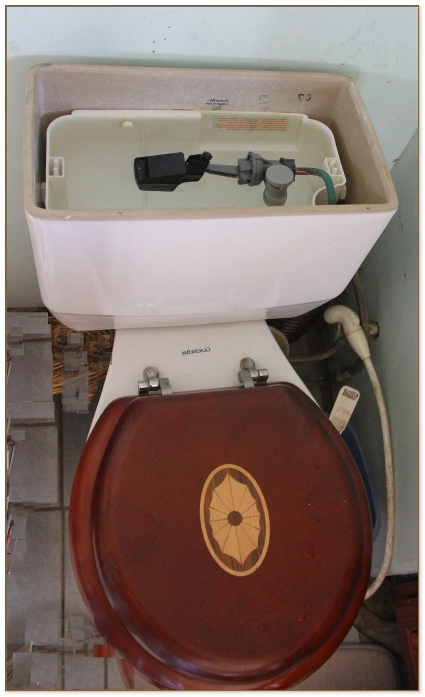 Niagara Stealth Toilet Problems