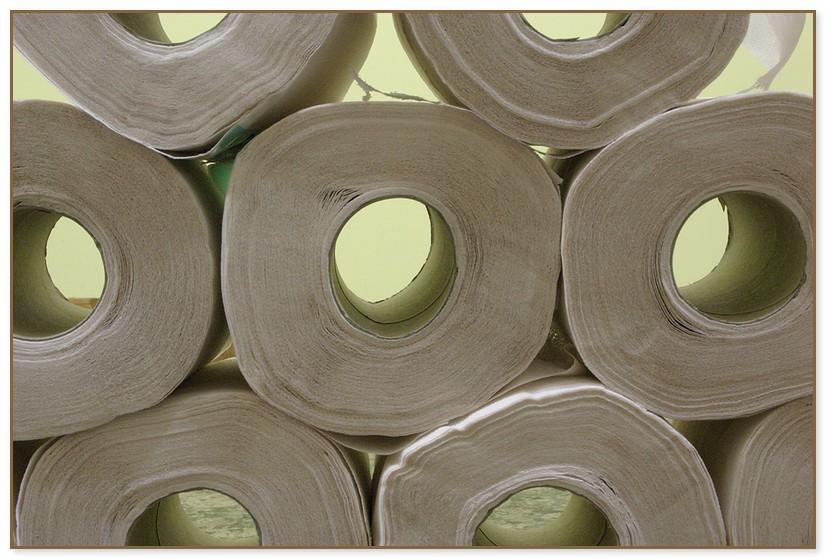 Ohio State Toilet Paper