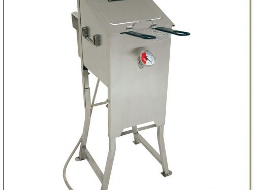 Commercial Propane Deep Fryer