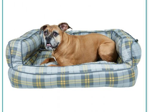 Max Studio Dog Beds