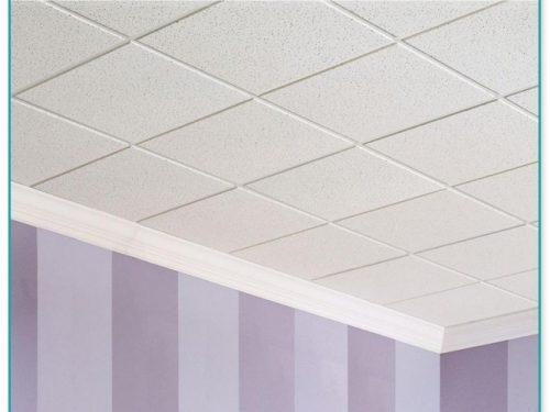 Usg Ceiling Tiles 2×4 2
