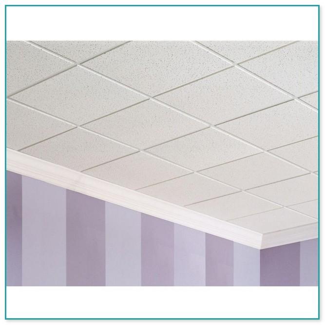 Usg Ceiling Tiles 2x4 2