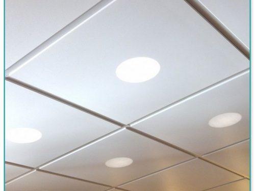 Usg Ceiling Tiles 2×4